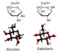 Glucosio-galattosio.png