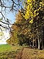 Goefis-Koehr-hiking path-01ESD.jpg