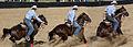Goulburn Rodeo 2011.jpg