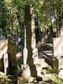 Grób Adama Kryńskiego.jpg