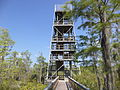 Grand Bay Wetlands Management Area Kinderlou Tower 03.JPG