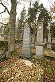 Gravestones at Jewish Cemetery in Dřevíkov, Chrudim District 02.JPG
