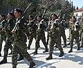 Greek Soldiers (5987158026).jpg