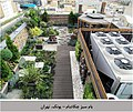 Green-roof-Tehran-Pounak.jpg