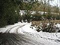 Green Lane, Churt - geograph.org.uk - 1152832.jpg