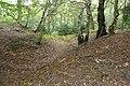 Grimsbury Castle - geograph.org.uk - 975991.jpg