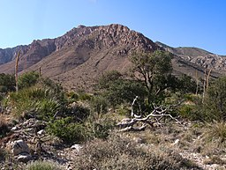 Guadalupe National Park (7671828172).jpg