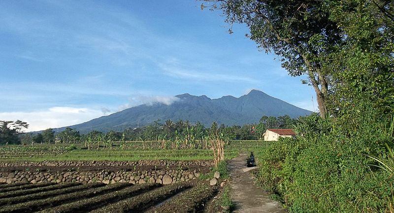 File:Gunung Salak Dilihat Dari Sebuah Desa Dekat Tajurhalang, Bogor.jpg