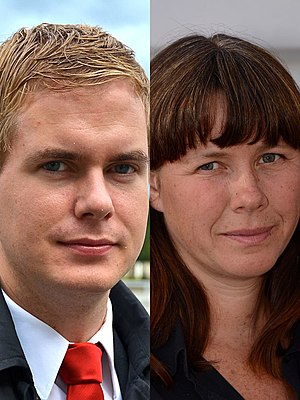 Swedish general election, 2014