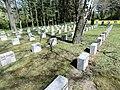 HAL-Gertraudenfriedhof Gefallene1.WK.JPG