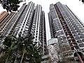 HK 半山區 Mid-levels 般咸道 Bonham Road buildings facade February 2020 SS2 11.jpg