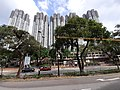 HK 城巴 CityBus 962B view 荃灣區 Tsuen Wan District 青山公路 Castle Peak Road November 2019 SS2 28.jpg