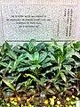HK Wan Chai North HKAPA 香港演藝學院 The Hong Kong Academy For Performing Arts Nov-2013 foundation stone sign (3).JPG