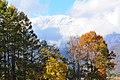 Hakuba scenery (2998947122).jpg