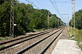 Halte Fontainebleau - Forêt IMG 8547.jpg
