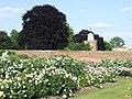 Hampton Court Palace - geograph.org.uk - 1926803.jpg