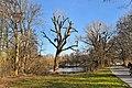 Hannover Herrenhausen 2014-I by-RaBoe 004.jpg