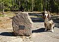 Hansta naturreservat Lindgrens berg 2013b.jpg