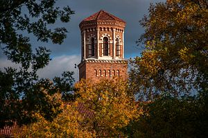 Midwestern State University - Midwestern State University Hardin Tower