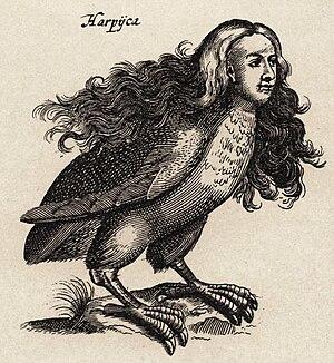 Harpy - A harpy in Ulisse Aldrovandi's Monstrorum Historia, Bologna, 1642