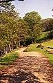 Hathersage - track beside River Derwent - geograph.org.uk - 628981.jpg
