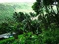 Hawaii Big Island Kona Hilo 222 (7025132399).jpg