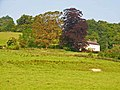 Henllys, near Llandovery - geograph.org.uk - 190361.jpg