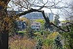High Park, Toronto DSC 0243 (17205771858).jpg