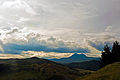 Hikurangi, East Coast, New Zealand, 14th. Dec. 2010 - Flickr - PhillipC.jpg