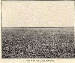 A black and white picture of the barren and level plain of the Llano Estacado in 1900 with sparse natural grass.
