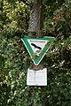 Hilzingen - Hohenkrähen 07 ies.jpg