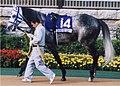 Hishi Miracle 20041031P1.jpg