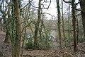Hoathly Pond - geograph.org.uk - 1759172.jpg