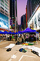 Hong Kong Umbrella Revolution (15607103021).jpg