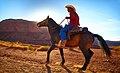 Horse (5951747975).jpg