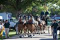 Horse Drawn Carriage (4946480264).jpg