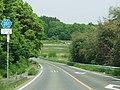 Ibaraki pref road 351 in Nakane.jpg