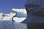 Icebergs Bransdield 1.jpg
