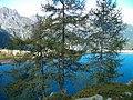 Il Lago dietrogli Alberi - panoramio.jpg