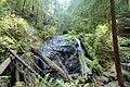 In Russian Gulch State Park.jpg