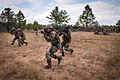 Indian Army soldiers execute an ambush for U.S. Army paratroopers at Fort Bragg.jpg