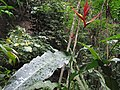 Inkaterra Machu Picchu Pueblo Hotel and Nature Reserve - Aguas Calientes, Peru (4875692219).jpg