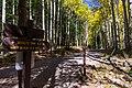 Inner Basin Trail No. 29 (29530975324).jpg