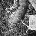 Inpoldering en bemaling, arbeiders, stellen spanstaven, Bestanddeelnr 159-1044.jpg