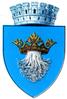 Interbelic Brasov CoA.png