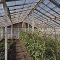 Interieur ramenkas - Aalsmeer - 20404766 - RCE.jpg