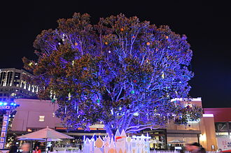 Irvine Spectrum - The stage for Disney Magical Holiday Lights