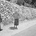 Israël - Peki'in. Het dorp Peki'in in Opper Galilea. 255-3753.jpg