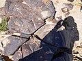 Israel Hiking Map ציורי סלע, לוחות הברית 1.jpeg