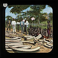 Ivory and Carriers (relates to David Livingstone) by The London Missionary Society.jpg